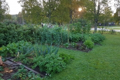 Trädgårdland