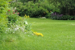gräsmatta och perennrabatter
